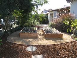 shade tolerant native plants design front yard veggie garden gardenerd