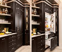 fridge that looks like cabinets built in refrigerators that blend perfectly into your kitchen s decor