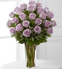 lavender roses lavender roses denver lavender roses denver co lavender roses