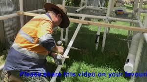 chicken walk coop chook pen design backyard run tractor poultry