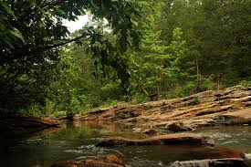 Arkansas wild swimming images Cool off this summer at these 30 arkansas swimming holes jpg