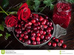 thanksgiving still life thanksgiving berries and roses stock photos image 16510903