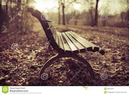 Park Bench Scene Bench Autumn Scene Royalty Free Stock Photography Image 36554697