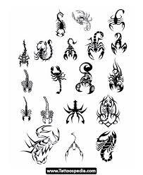 100 scorpion tattoo designs realistic scorpion tattoo