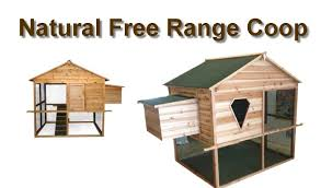 Small Backyard Chicken Coop Plans Free by Chicken Coop Plans For Free Range 9 Chicken Coop Run Backyard