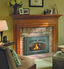 Gas Inserts For Fireplaces by Fireplace Inserts Gas Inserts Pellet Inserts Wood Burning