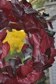 turkey feather wreath diy turkey feather wreath for fall dan330