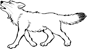 wolf coloring page for kids coloring home