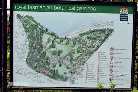 Botanic Gardens Hobart Tasmanian Botanical Botanical Garden Photography