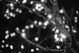 black and white christmas lights christmas lights decoration