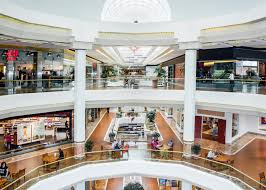 the case for the american mall racked