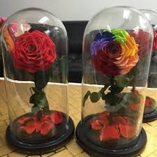 china florist wholesale fresh cut dried flower preserved roses