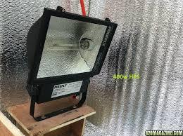 400 Watt Hps Grow Light Starting Autoflower With 400w Hps From Seed 20 4