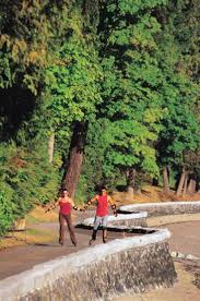 top 10 things to do in stanley park vancouver