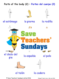 spanish preterit ar verbs and clothing sentences worksheet la