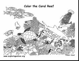 unbelievable coral reef coloring pages with coral reef coloring