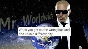 Pitbull Meme Dale - best pitbull memes to celebrate mr worldwide s birthday social