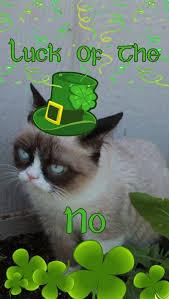 St Patricks Day Memes - more st patrick s day memes 43 pics