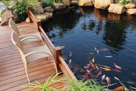 Backyard Fish Pond Kits by Easypro 3500 Gallon Koi Pond System Liner Not Included