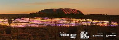 field of light uluru uluru transformed by field of light installation