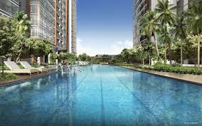 coco palms at pasir ris grove by cdl coco palms floor plans