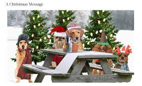 picture christmas cards 10 best electronic christmas cards websites
