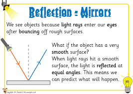 pet mirror reflections posters free classroom display resource