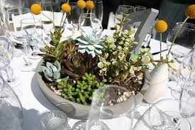 succulent centerpieces 7 diy succulent centerpieces that are cheap and easy to make