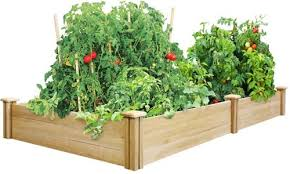 Raised Beds For Gardening How To Build A Raised Garden Bed Elevated And Raised Garden Beds