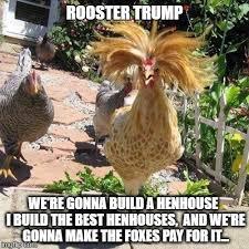 Rooster Meme - trump rooster memes imgflip