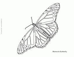 monarch coloring page coloring home