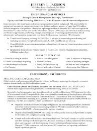 Resume Of Mis Executive Cfo Resume Examples Resume Example And Free Resume Maker