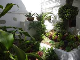 casa los cantaros hotel boutique oaxaca city mexico booking com