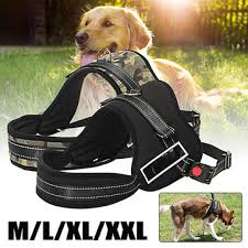 dog pulling harness Fashion online sale at NewChic