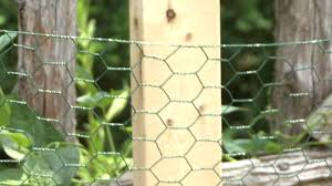 keep animals out of your garden by black decker youtube