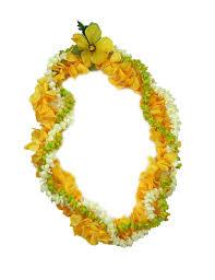 flower leis check out the deal on pakalana pikake puakenikeni twirl silk