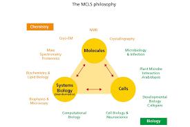 molecular and cellular life sciences masters utrecht university