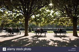 people relaxing on park benches in the autumn sunshine paris