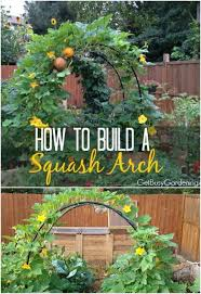 Diy Garden Trellis Ideas 20 Easy Diy Trellis Ideas To Add Charm And Functionality To Your