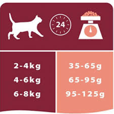 purina pro plan cat food optirenal rich in salmon review