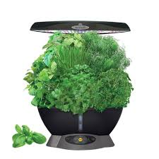 click and grow smart herb garden with 3 basil cartridges indoor