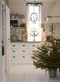 potted christmas tree potted christmas trees make every room festive cafemom