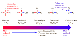 reduction oxidation and available energy