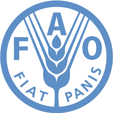 United Nation Flag Flag Of Food And Agriculture Organization Rankflags Com