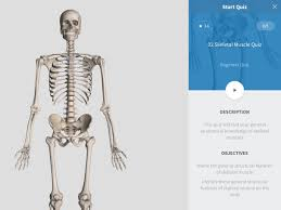 Anatomy And Physiology Online Quizzes Quizzes U2013 3d4medical