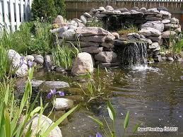 How To Build A Backyard Pond Or Water Garden How To Build A Backyard Pond