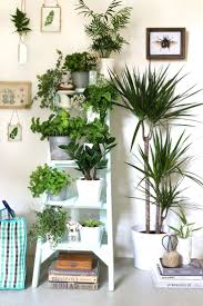 plants trendy wicker plant stands indoor uk large size of plant