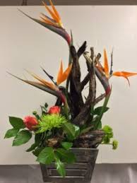 flower delivery omaha ne modern tropical designs all seasons floral gifts omaha ne