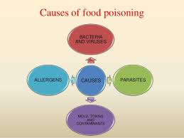 food poisoning causes symptoms food poisoning treatment cure
