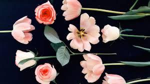 spring on screen desktop wallpaper justina blakeney the